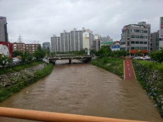 Rainy Season, day 3